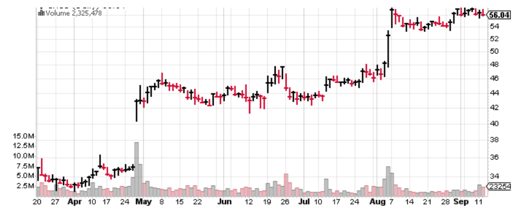 This low-risk stock has a great chart, and could come in handy in case of a bear market.