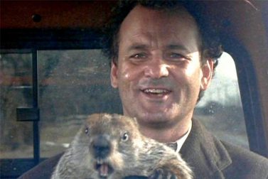 How to Kill a Groundhog