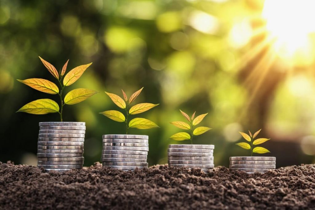 Plants growing out of coins on the ground to signify growth stocks, the best marijuana stocks, and low-priced marijuana stocks