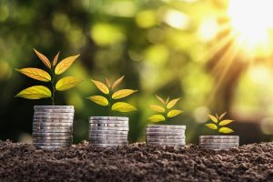 10 Rules for Growth Investing