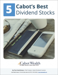 Best Dividend Stocks Report Cover