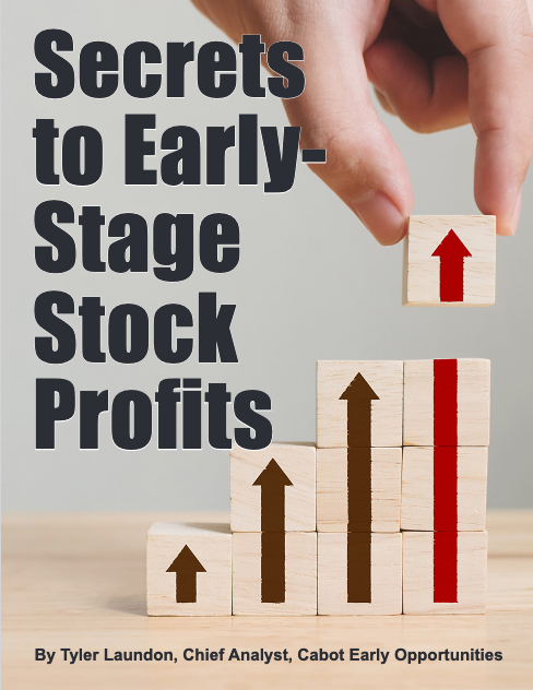 Early Stage Stock Profits