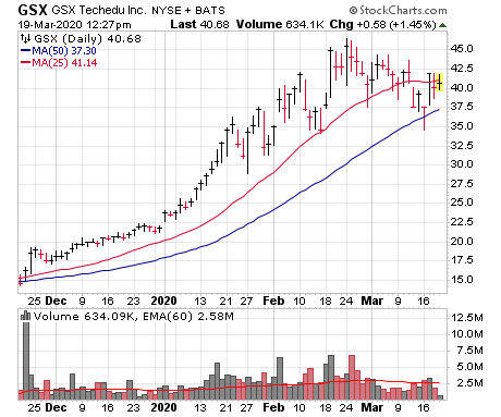GSX Techedu (GSX) is one of two growth stocks holding up well amid this crash.