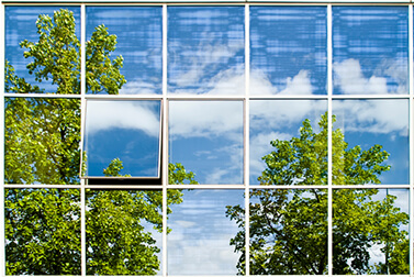 Green trees reflecten on business building