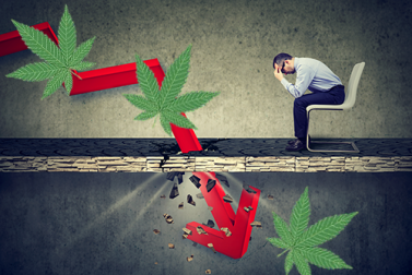 Why You Should Buy Cannabis Stocks Now