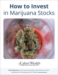 How to Invest in Marijuana Stocks Report Cover