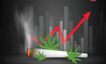 4 Reasons Marijuana Stocks are Red-Hot