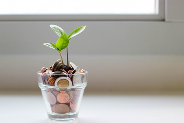 What is a Growth Investor and Should You Become One?